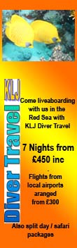 KLJ Diver Travel
